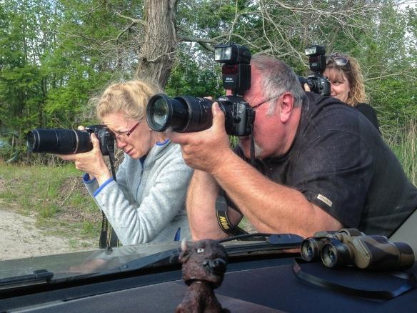 Bass Lake Photo Club members capturing a bear