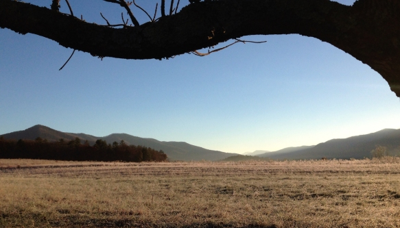 Cades Cove early morning looking down the valley