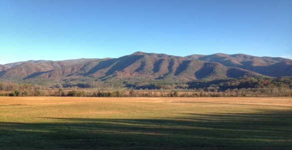 Cades Cove meadows