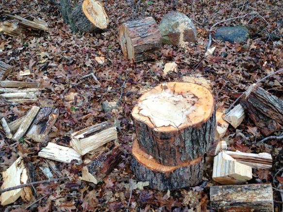 splittling wood