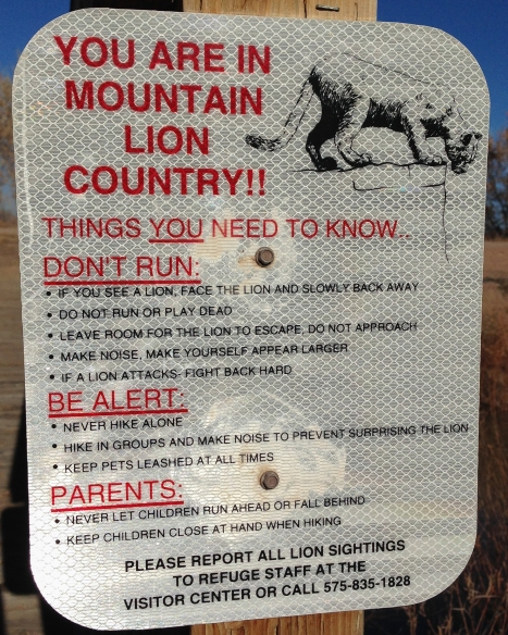 Mountain Lion signage