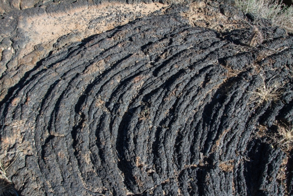 Valley of Fires pahoehoe