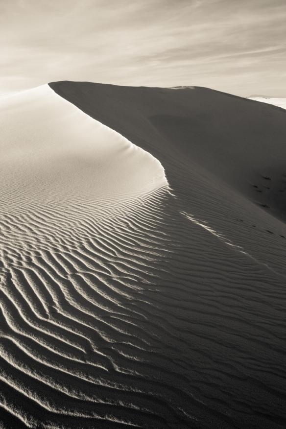 White Sands National Monument 22
