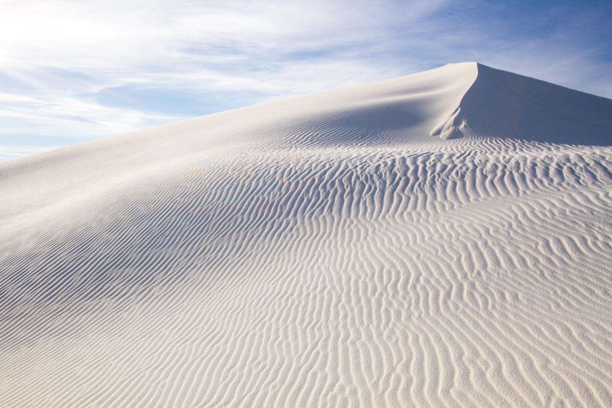 White Sands Roads End Naturalist