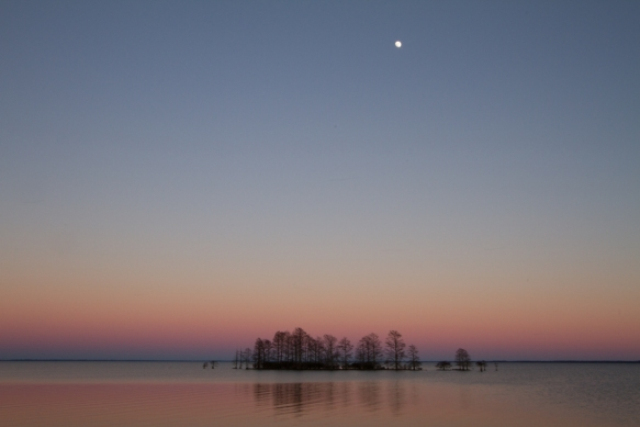 Moonrise at sunset on Lake Mattamuskeet
