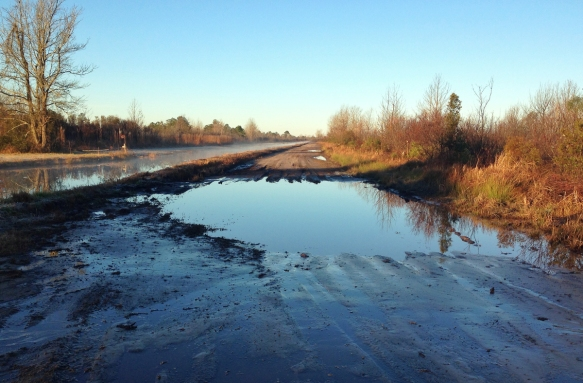 Mud hole in road at Pungo