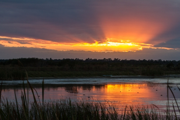 Sunset Click Ponds