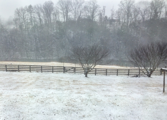 The snow starts to fall