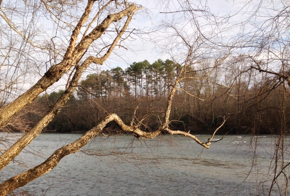 Yadkin River 1