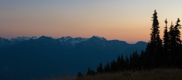 Hurricane Ridge ONP 2