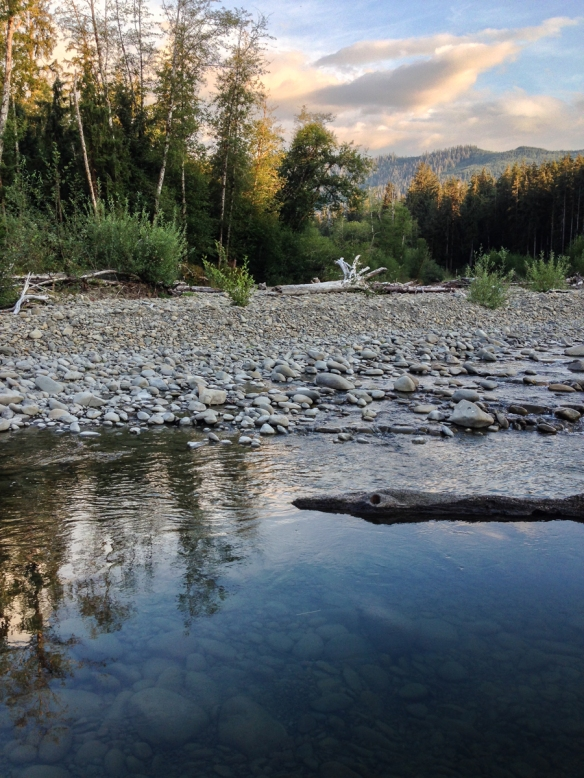 Queets River 1
