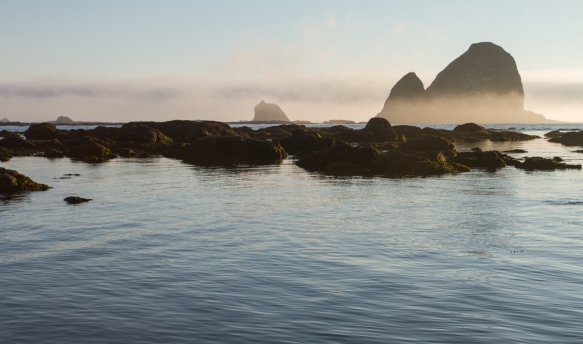 sea stacks in fog