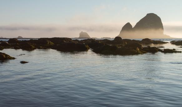 sea stacks in fog