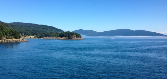 Views from the ferry headed to San Juan Island