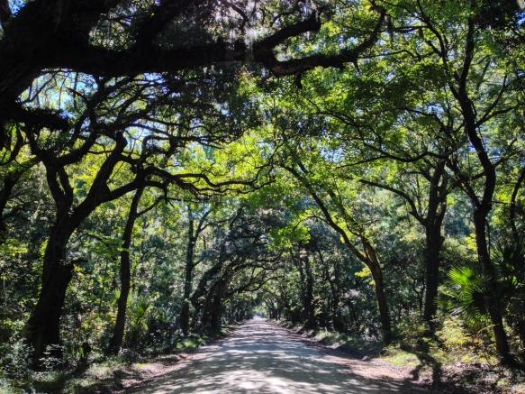 Botany Bay roadway