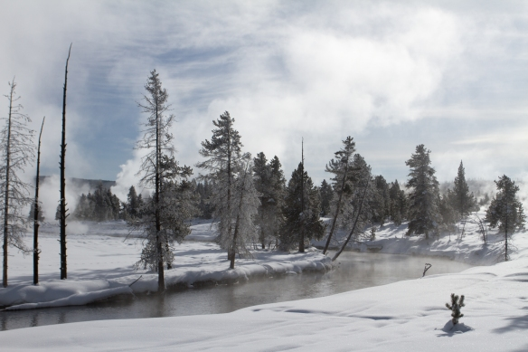 Firehole River remains ice free