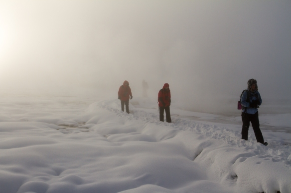 Hikers in a geyser basin