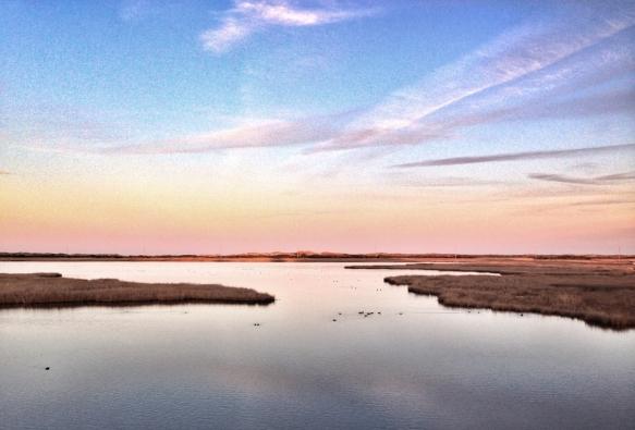 Bodie Island pond