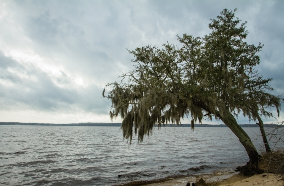 Storm clouds along the Pamlico
