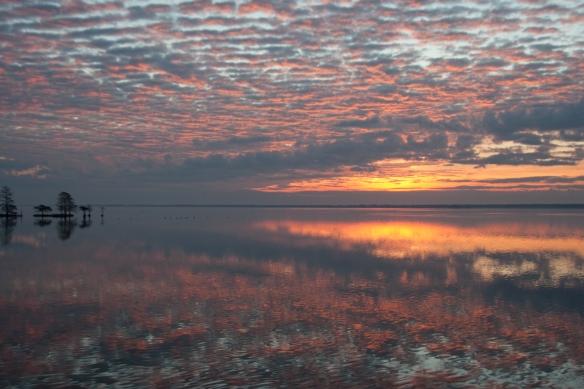 Sunrise Lake Mattamuskeet