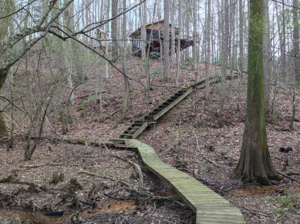 Camping platform along the Roanoke River