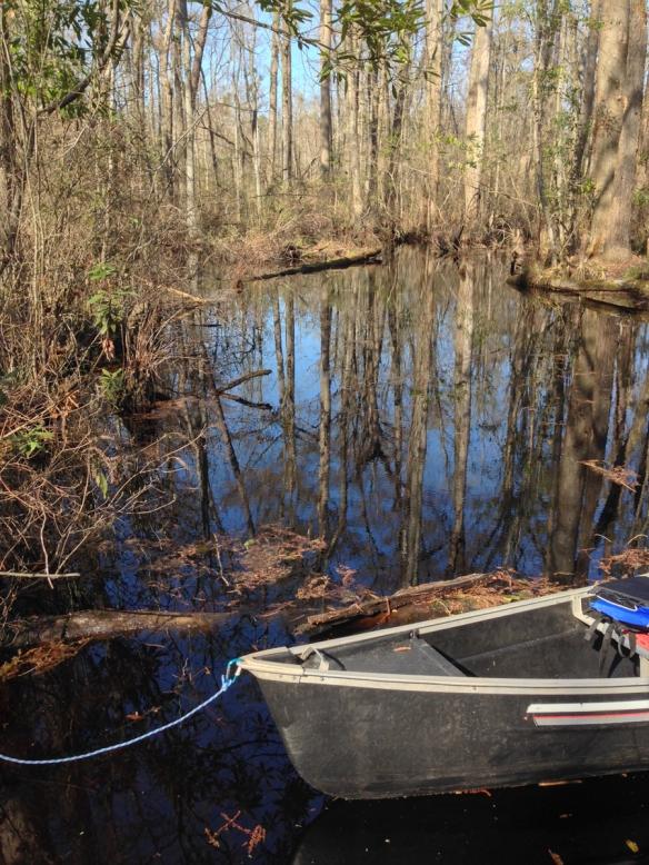 Canoe at camping platform