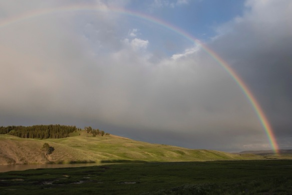 Rainbow in Hayden Valley