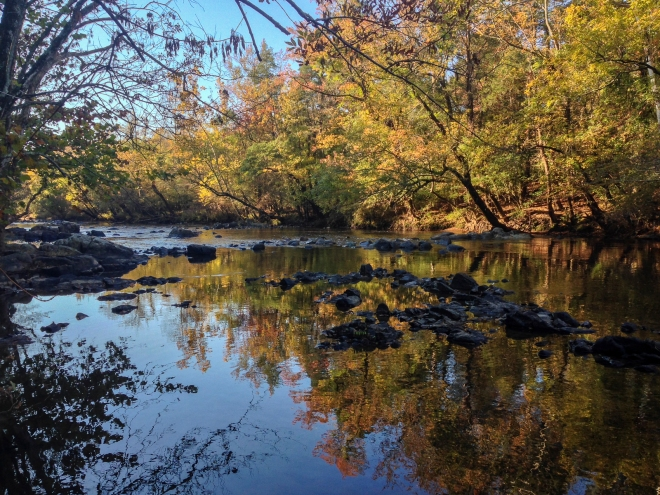 Haw River reflections 1