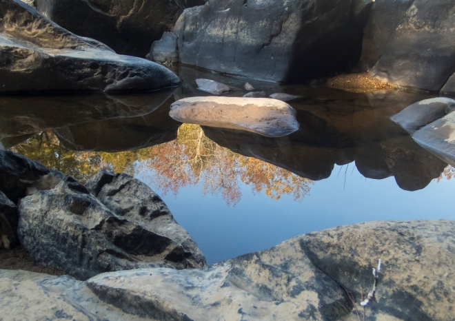 Haw River reflections 2