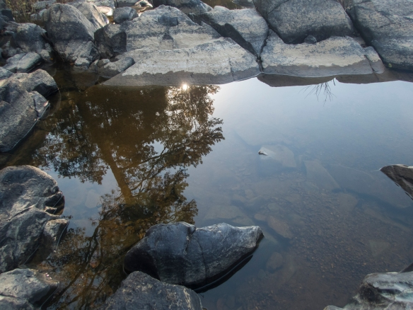 Haw River reflections 4