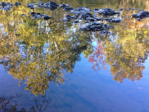 Haw River reflections