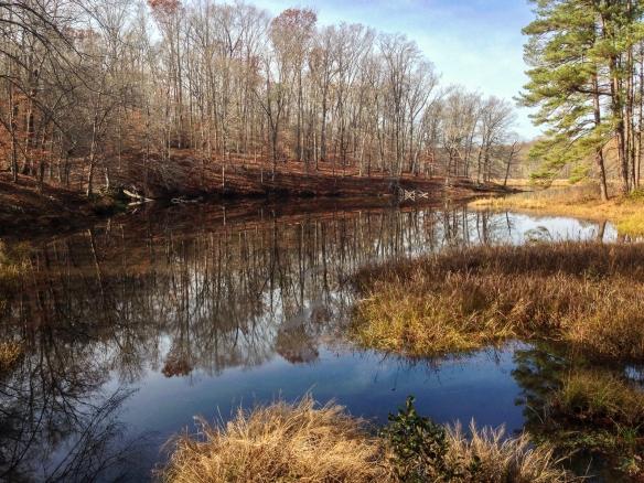 Beaver Lake, Pocahontas State Park, VA