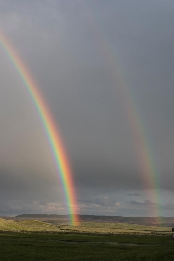 Double rainbow in Hayden Valley 1