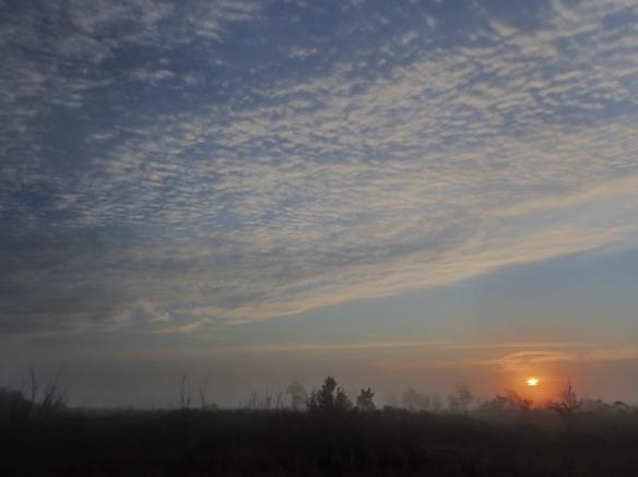 sunrise Pungo at platform