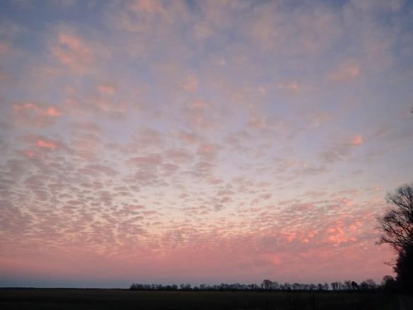 Pungo sunset 3
