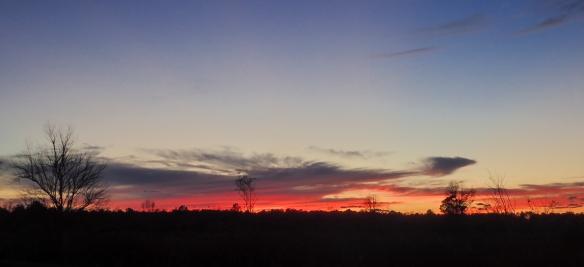 Pungo sunset