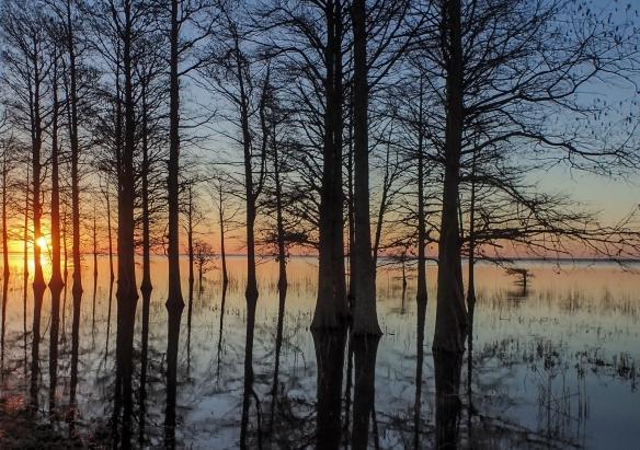 sunrise north shore of mattamuskeet 1