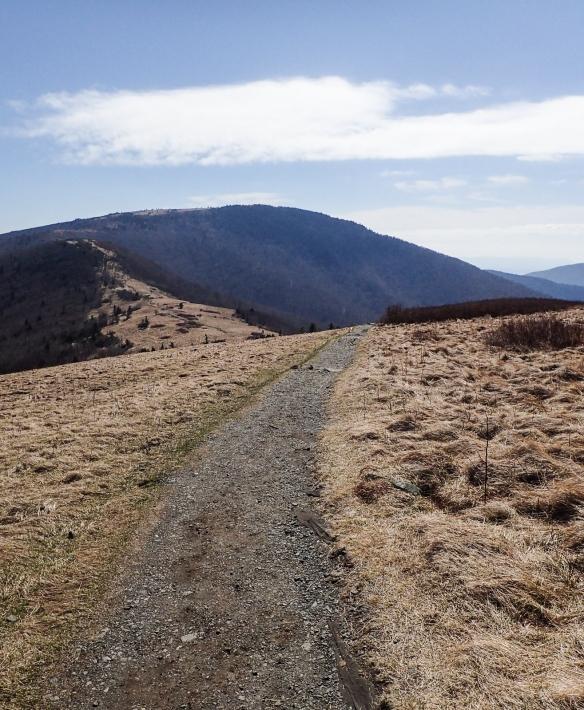 Roan Highlands trail