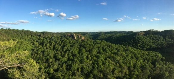 Red River Gorge scenic vista
