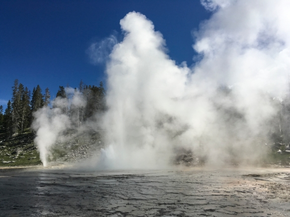 Grand Geyser in eruption