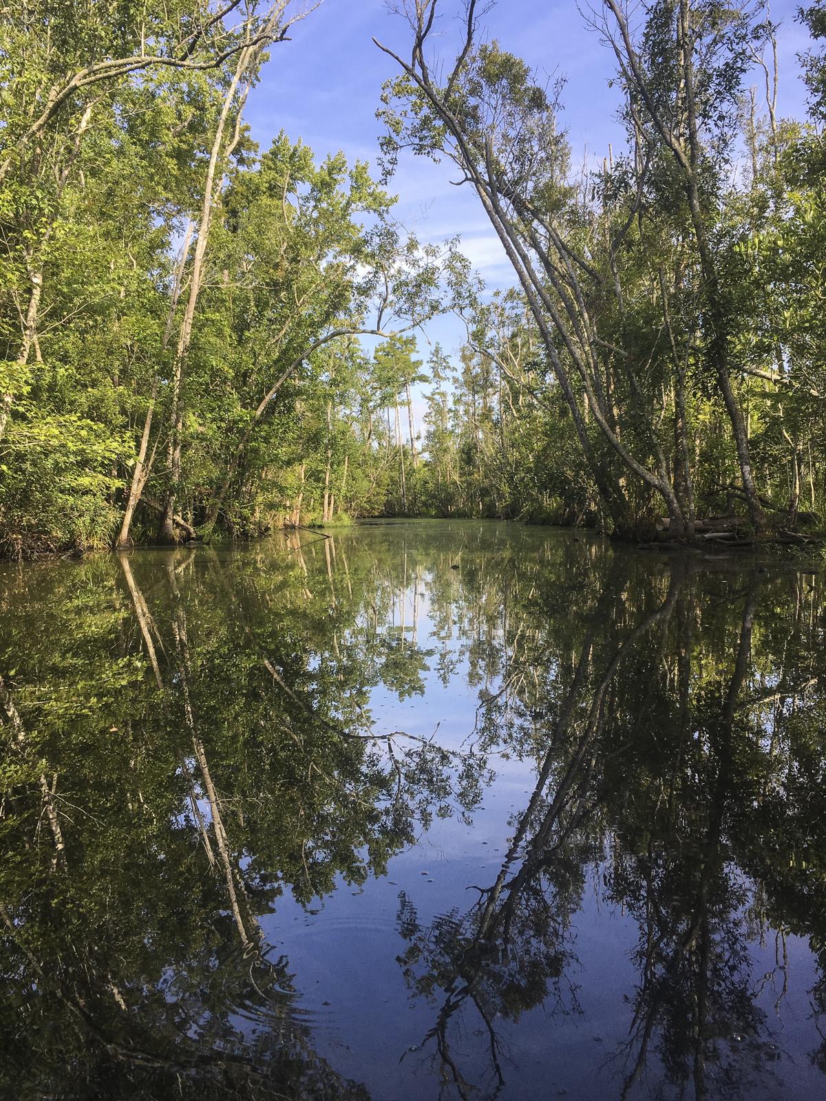 Rider's Creek