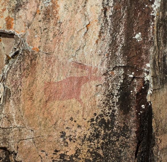 Moose rock painting