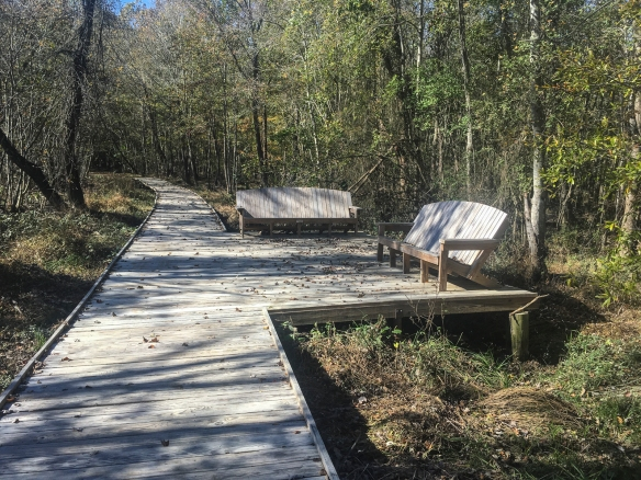 Mason Farm boardwalk and benches