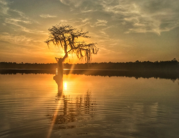 Jones Lake sunset 1 Lake sunset