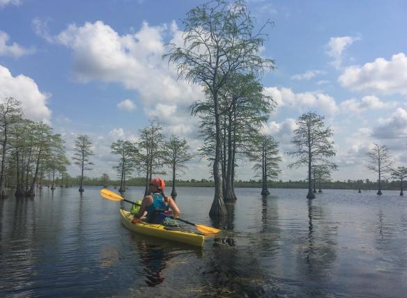 Melissa paddling Horseshoe Lake