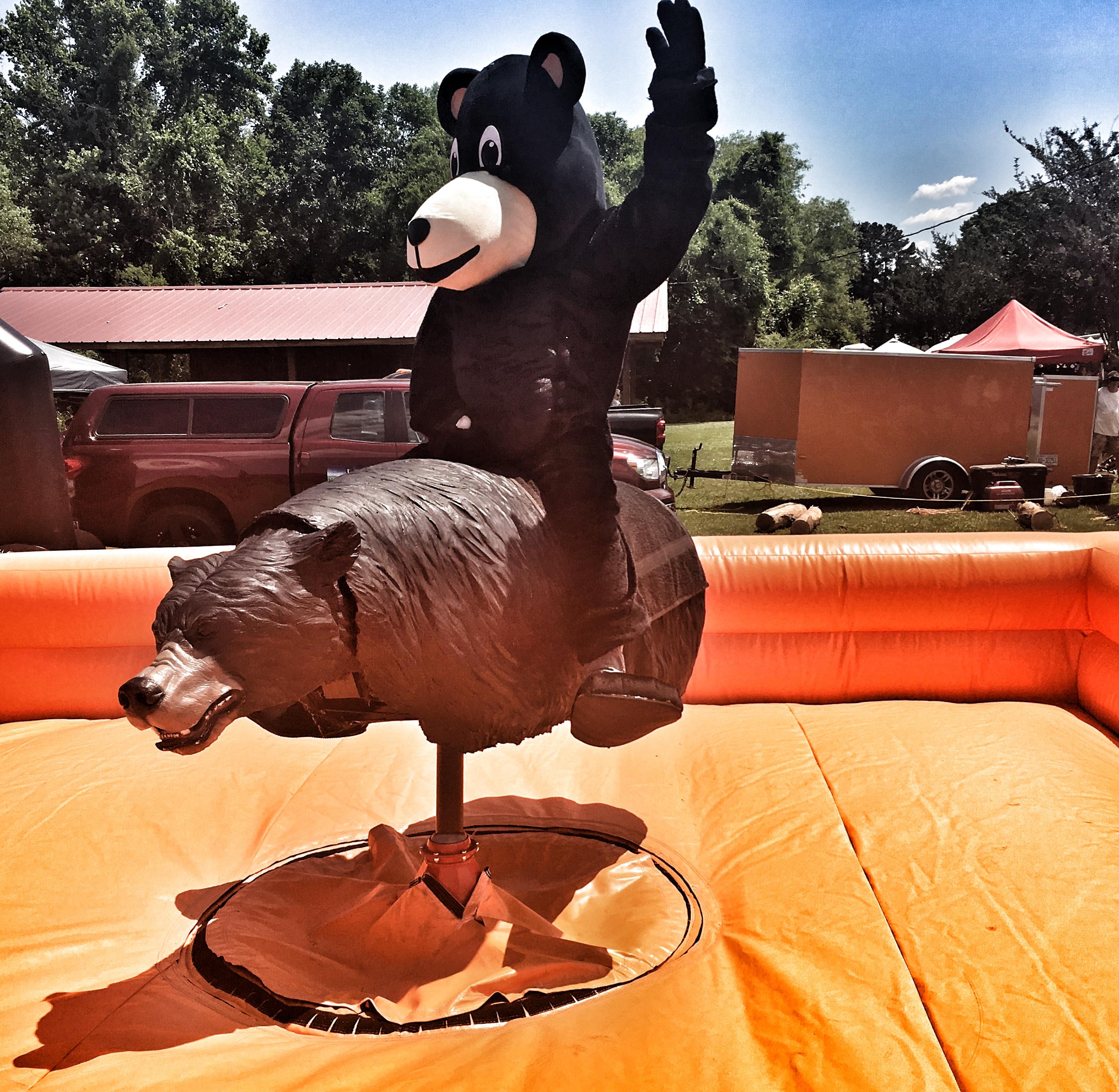 Bronco bear