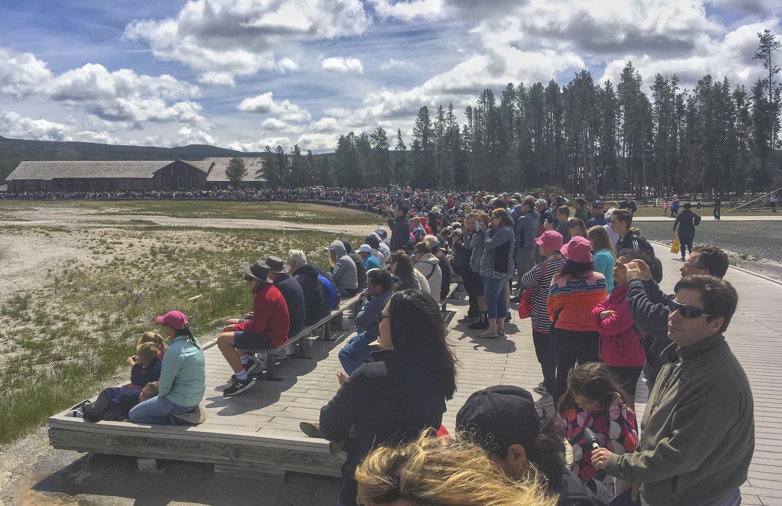 Old Faithful crowds