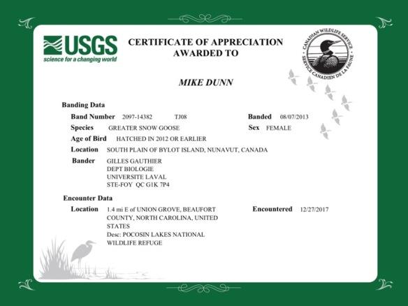 Snow goose TJ08 certificate