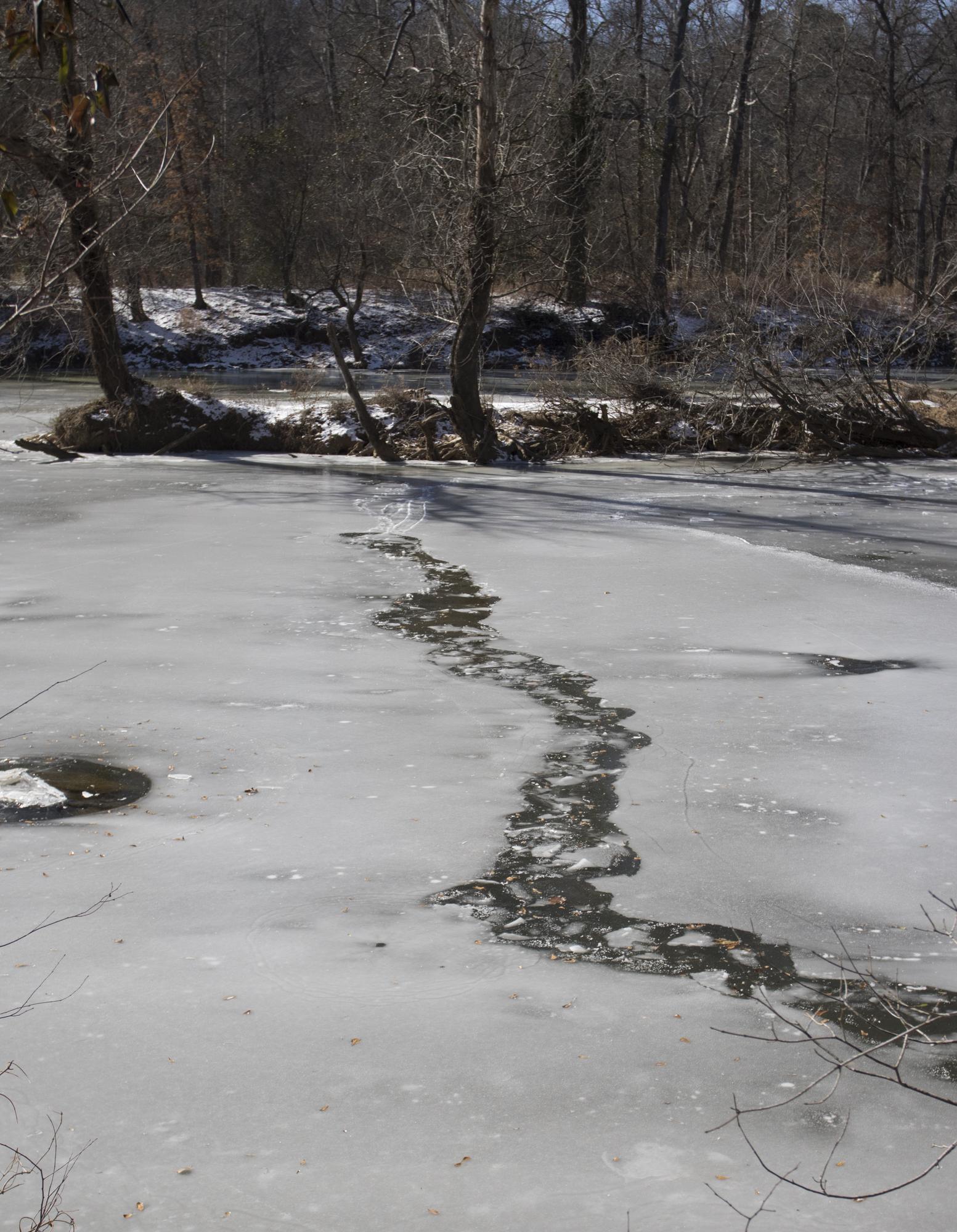 Beaver trail through ice