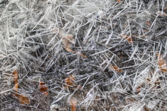crystals in ice